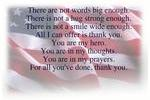http://temp_thoughts_resize.s3.amazonaws.com/35/331ea0a7e911e6ae7f619fc09bcaa3/Veterans-Day-Thank-You-Quotes.jpg